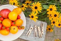 Tomates en la placa en un jardín Foto de archivo libre de regalías