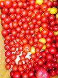tomates en un cajón Imágenes de archivo libres de regalías