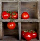 Tomates en un embalaje de madera Fotos de archivo