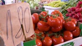 Tomates en un precio de 180 - dibujado manualmente en el papel almacen de metraje de vídeo