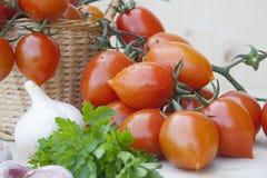 Tomates en una cesta de mimbre Fotografía de archivo libre de regalías