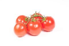 Tomates en una rama Imagen de archivo