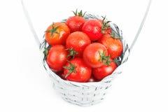 Tomates escogidos aislados en el fondo blanco Imágenes de archivo libres de regalías