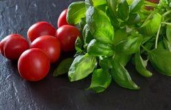 Tomates et basilic rouges photo libre de droits