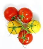 Tomates et citrons sur la même branche image stock