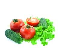 Tomates et concombres sur des lames de laitue Images libres de droits