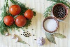 Tomates et herbes Photos stock