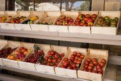 Tomates et légumes dans un support du marché de Moustiers Sainte-mA photo libre de droits