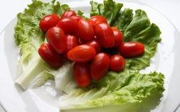 Tomates et laitue image libre de droits
