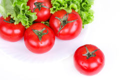 Tomates et lame de salade de plaque Photo stock