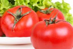 Tomates et lames de salade de plaque Images libres de droits