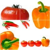 Tomates et poivrons mûrs lumineux Images stock