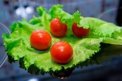 Tomates et salade image stock