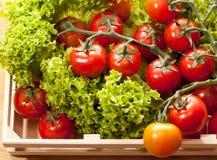 Tomates et salade dans le panier en bois Photo stock