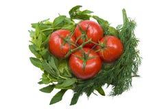 Tomates et verts Images libres de droits