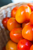 tomates Fin-rouges Photos stock