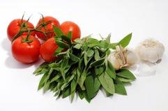 Tomates, folhas prudentes e alho Foto de Stock