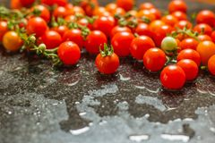 Tomates fraîchement cuites tout préparées photo libre de droits