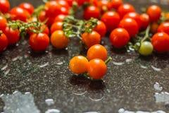 Tomates fraîchement cuites tout préparées images libres de droits