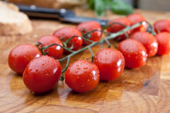 Tomates fraîchement lavées de vigne photographie stock libre de droits