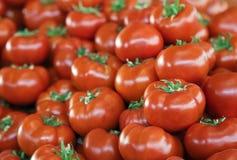 Tomates fraîches à un marché Photo stock