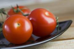 Tomates fraîches Photos stock