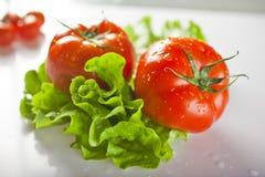 Tomates fraîches Photos libres de droits