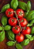 Tomates fraîches avec le basilic sur le conseil en bois Images stock