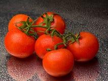 Tomates fraîches dans les gouttes de l'eau Photographie stock