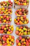 Tomates fraîches, diverses tomates mûres organiques sur le marché Image stock