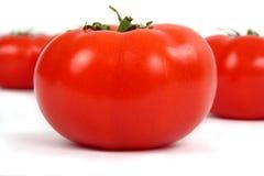 Tomates fraîches et rouges Photographie stock