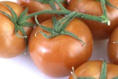 Tomates fraîches pour la salade Ainsi à irritable et à appétissant photographie stock