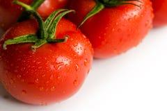 Tomates fraîches rouges sur le fond blanc Photo libre de droits