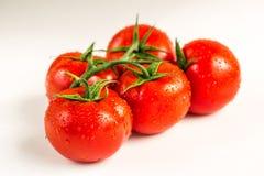 Tomates fraîches rouges sur le fond blanc Photographie stock