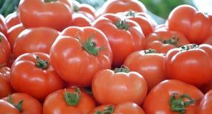 Tomates fraîches sur un marché Image stock