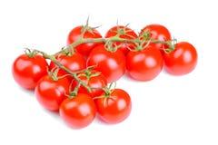 Tomates fraîches sur une branche sur un plan rapproché blanc de fond D'isolement images stock