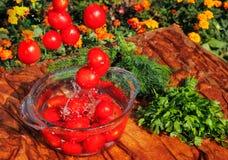 Tomates fraîches tombant dans l'eau pure Photos stock
