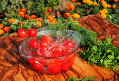 Tomates fraîches tombant dans l'eau pure Photo stock