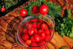 Tomates fraîches tombant dans l'eau pure Image libre de droits