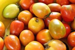 Tomates fra?ches sur le march Images libres de droits