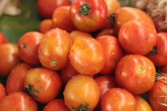 Tomates fra?ches sur le march Photos stock