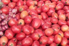 Tomates fra?ches sur le march Photo libre de droits