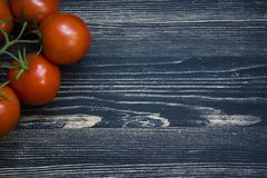 Tomates fra?ches sur un branchement photo libre de droits