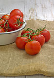 Tomates fraîches Photo libre de droits