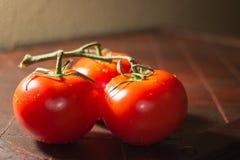Tomates fraîches Image stock