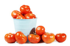 Tomates fraîches d'isolement sur le blanc Image stock