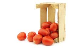 Tomates fraîches et colorées de Roma d'Italien Photographie stock libre de droits