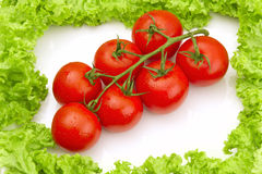 Tomates framed with salad Stock Image