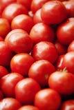 Tomates frescos Foto de archivo