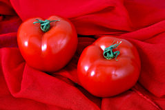 Tomates frescos Foto de Stock Royalty Free
